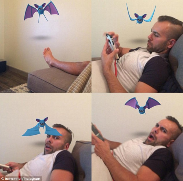 3618D73700000578-3681995-This_Zubat_was_terrorising_a_man_on_his_own_couch_the_poison_typ-m-22_1468059322932